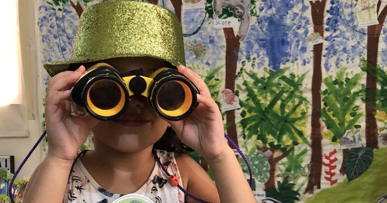 WHAT TO TEACH? STEP BY STEP 3 WEEK RAINFOREST THEME UNIT STUDY