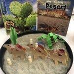 habitats, desert